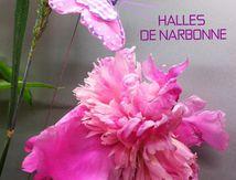 Fleurs et fleuriste à Narbonne