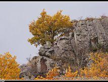 Au dessus du Fromental, la nature a roussi aussi ...