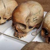 Butin colonial : 300 crânes d'Africains conservés à Bruxelles - Le site de Michel Bouffioux