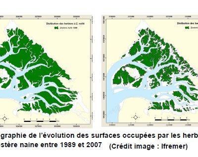 III) Conséquences d'une disparition du Bassin