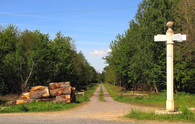 le carrefour Saint-Hubert