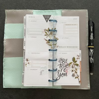 Plan with Me: Mini Skinny happy planner_ Semaine 10