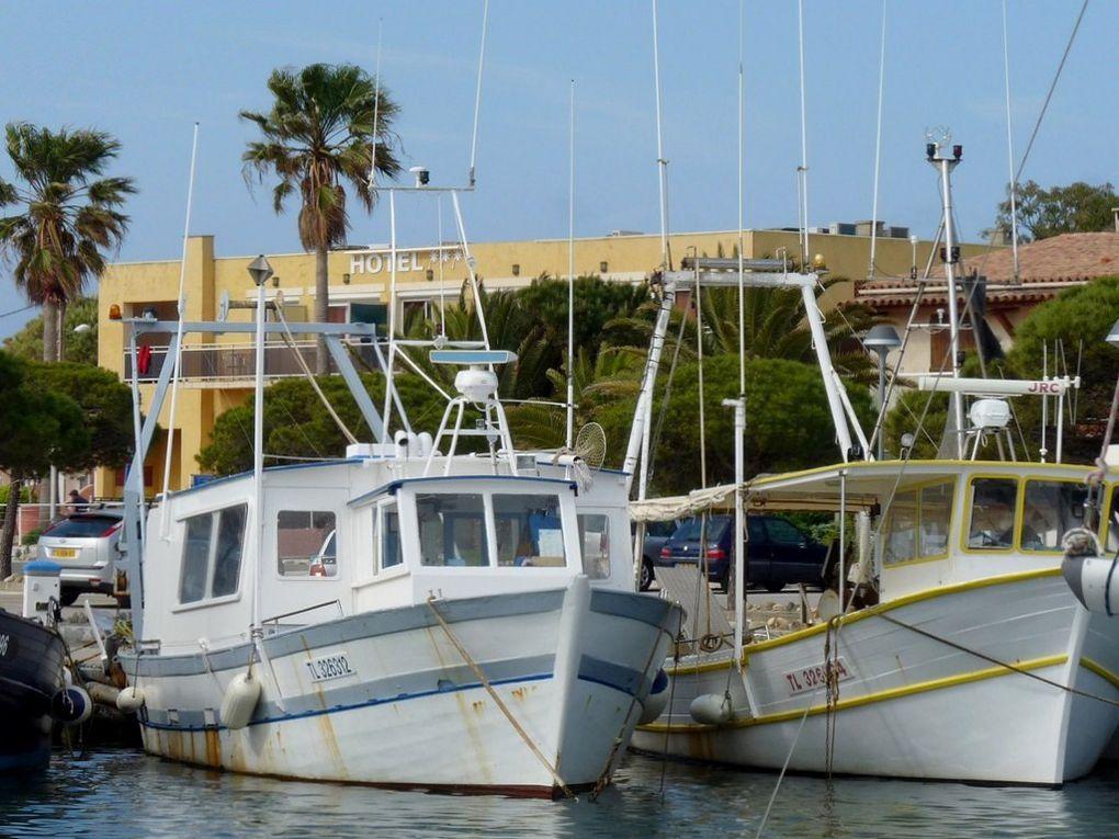 ALAIN II , TL326312 , dans le port de Hyères