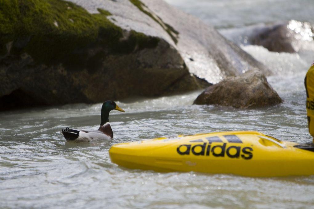 Championnats du monde de kayak extrême 2008