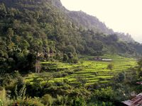 TREK AUTOUR DES ANNAPURNAS (Himalaya-Népal)