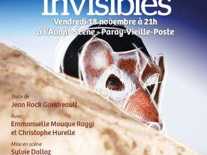 La Migration des oiseaux invisibles de Jean-Rock Gaudreault