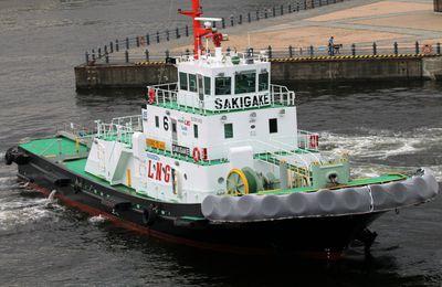 Bateaux dans la baie de Tokyo Japon
