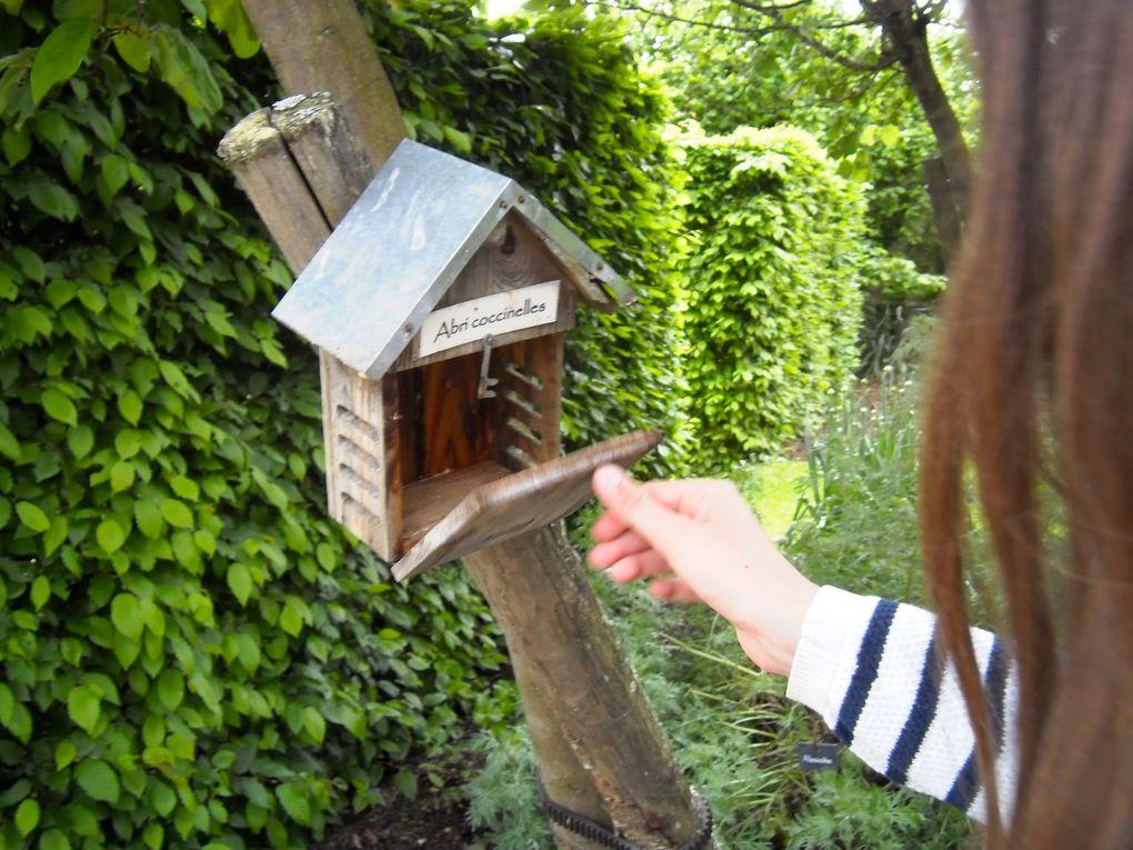 3 photos - Le Jardin bénéficie d'une gestion écologique.