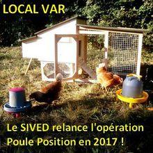 Local VAR : Opération Poules Position 2017 du SIVED - Inscrivez-vous !