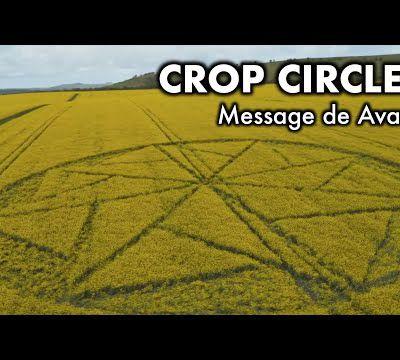 les crop circles par rémy