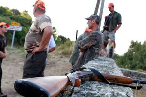 Biodiversité : le Sénat vote une loi écornée par le lobby des chasseurs