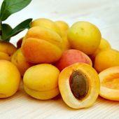 Abricot : propriétés, bienfaits, contre-indications, variétés et recettes