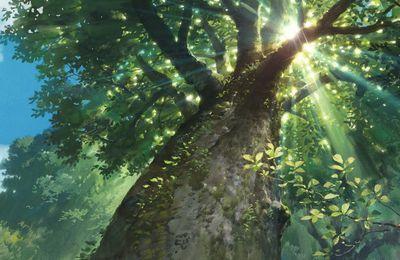 Une idée pour un petit Soleil Vierge : comme un arbre