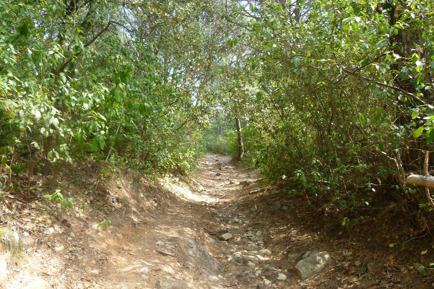 Randonnée Saint Hippolyte de Montaigu - Saint Victor des Oules (30).