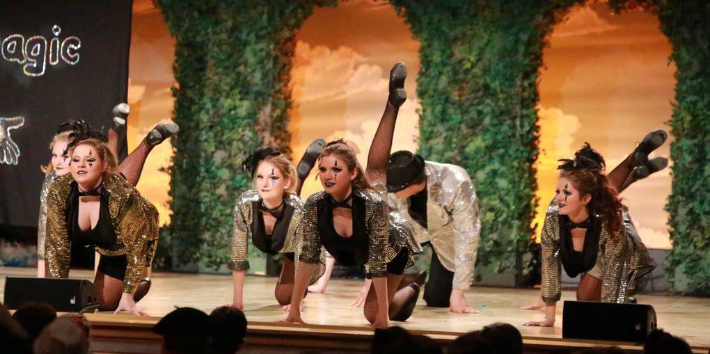 """Die Ochsenfurter Gästegarde verzauberte das Narrenvolk mit ihrem originellen und höchst artistischen  Schautanz """"Its magic – Die Zauberprüfung"""" - Eine grandiose, auch choregraphisch ausdrucksstarke Darbietung."""