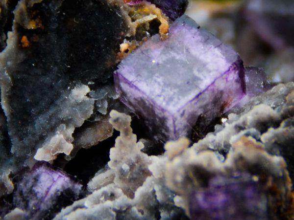 Fluorite (Fluorine) Baryte from El Filo, Mexico (Mexique) (size: Museum XL)