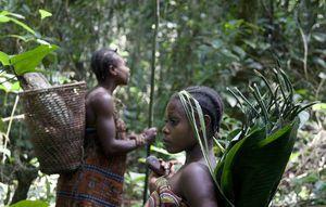Violations des droits de l'homme : le WWF complice