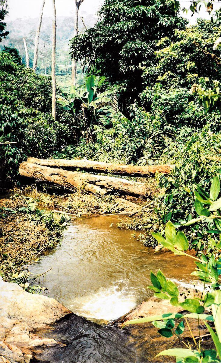 Cours d'eau aux alentours de Kloto