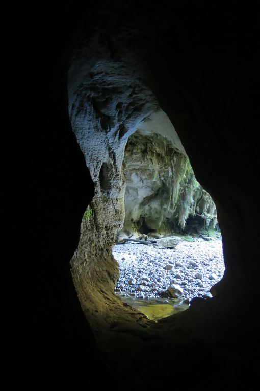 Oparara arch and cave.