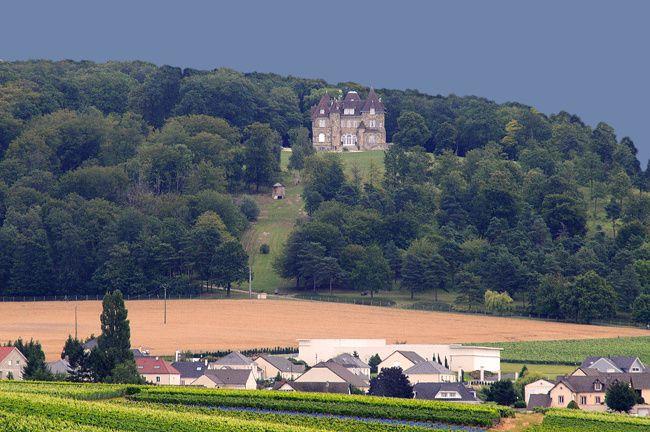 Découverte du Tardenois, parc régional de la Montagne de Reims.
