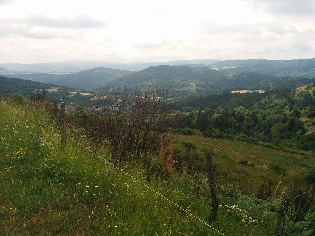Depuis Aydat jusqu'à Saint-Nectaire, entre randonnée et tourisme