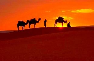 Looking For Morocco Desert Tours To Visit The Top Places In Morocco?