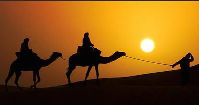 Travel in Morocco / Trips in Morocco / Camell trekking in Morocco / tours In Morocco /Excursions From Marrakech / one night in the desert Erg chabbi Desert / Morocco Desert Excursions / Marrakech desert Trips