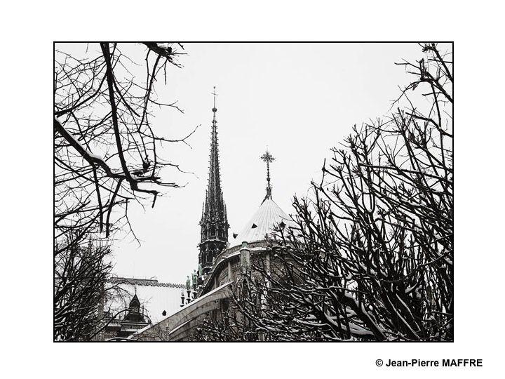 Cette année Notre-Dame de Paris et ses environs se sont recouverts d'un voile blanc de poésie. Janvier 2013.