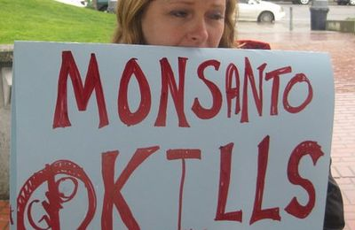 Alerte Danger : Monsanto et Corruption, pressions, lobbys, mensonges scientifiques, pollution, destruction