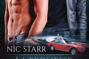 Héros tome 2 : La promesse d'Andrew de Nic STARR