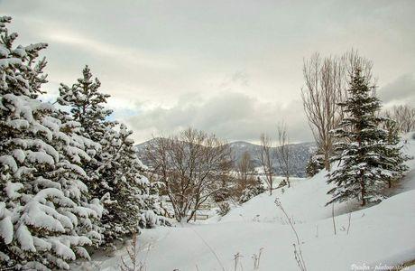 Paysage d'hiver sous la neige....