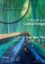 """Exposition B. Camallonga, """"l'âme des pays"""", à la Galerie Lec lec Tic de Nouméa 2012"""