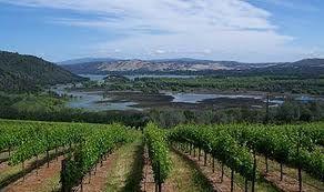 Viticulture en Georgie