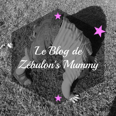 Le Blog de Zébulon's Mummy