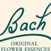 Fleurs de Bach : RESCUE - Delphine Basson Psycho