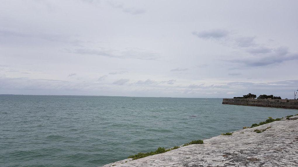 île de Ré - Royan - Ars en Ré - Saint Martin en Ré