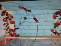 Vitrines automne-hiver pour TRESOR BY...