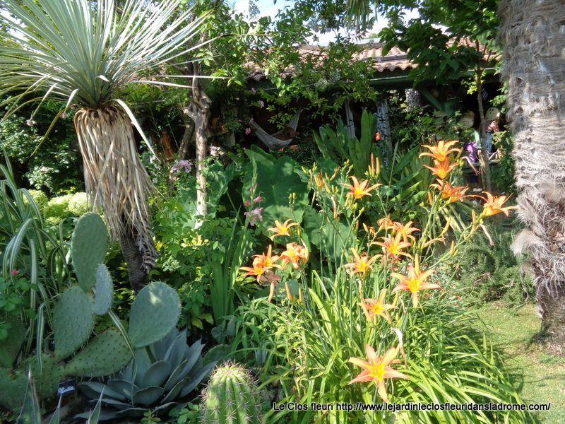 Mon jardin Le Clos fleuri en août 2019