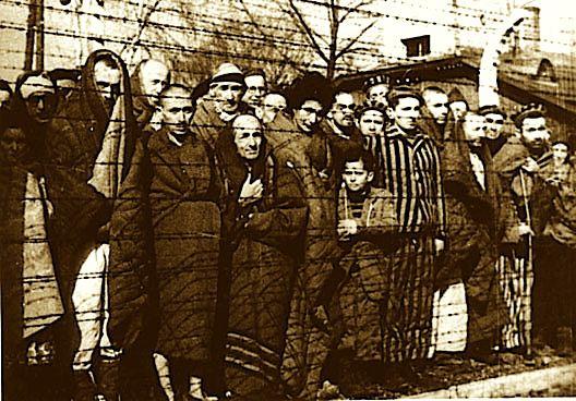 Après 70 ans G'Froid Roux'blard le Baizeur en chef de la synarchie, prêt à réouvrir sa première usine à gaz
