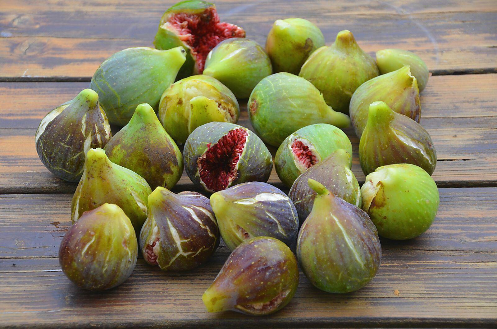 Domaine Les Cyprès - Atelier - potager - vignes