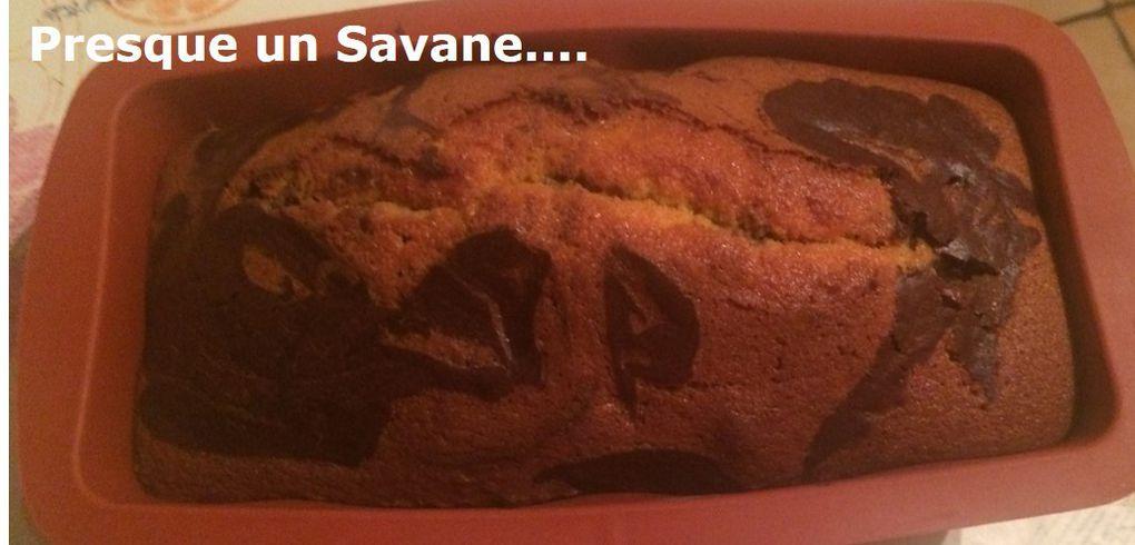 Presque un Savane....