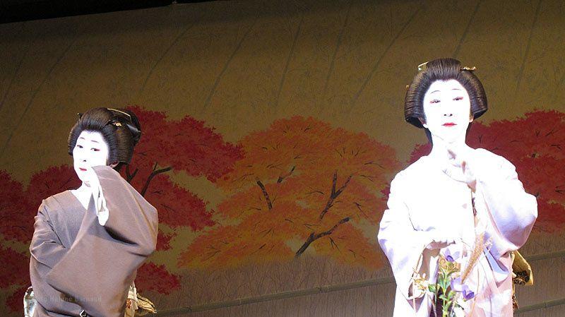 Un tout petit aperçu de tout ce qu il y à voir à Kyoto