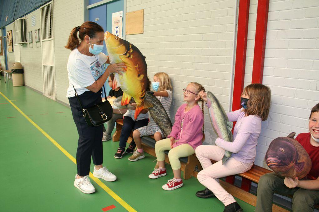 Mercredi 4 Août 2021. Lors du stage Nature, les enfants sont sensibilisés à l'environnement. Avec leur animateur Florentin, les enfants ont découvert les poissons d'eau douce au travers de peluches représentant: le gardon, le brochet, la truite arc-en-ciel, la truite fario, la perche, le silure, la carpe miroir, le sandre et le gobie à tâches noires.