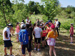 Allons  : La découverte de la biodiversité pour la classe de Lionel Cavallo