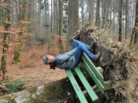 Pas facile de s'installer sur un  banc , où est le bon sens ?