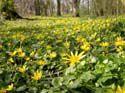 Les richesses naturelles du Pas-de-Calais et son biotope exceptionnel
