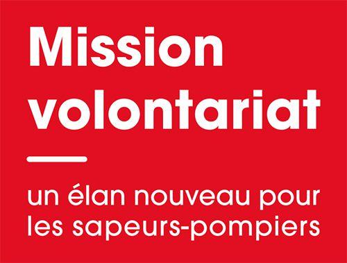***COMMISSION SPV // MISSION VOLONTARIAT***