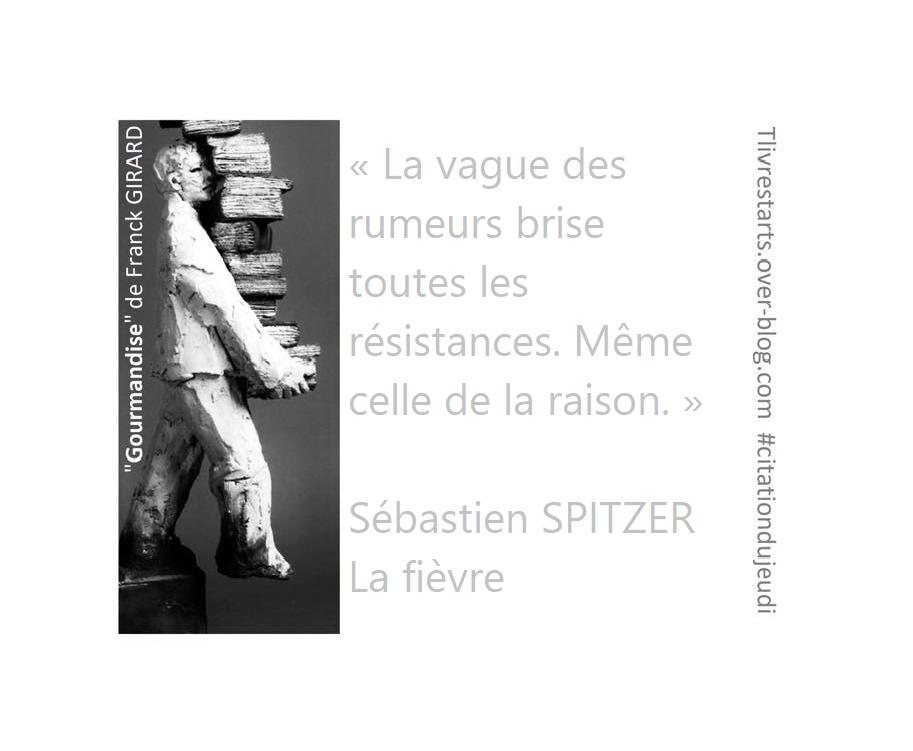 La fièvre de Sébastien SPITZER