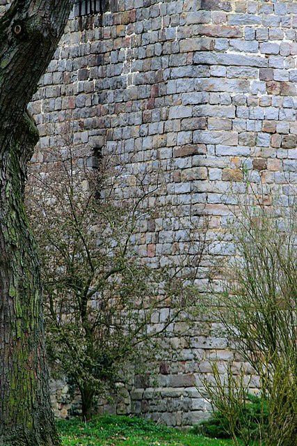 Diaporama du château de Cerny lès Bucy