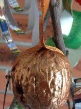 """""""Mme été"""" à la façon de Arcimboldo, noix peinte pour Noël, collage de vraies feuilles d'arbres"""